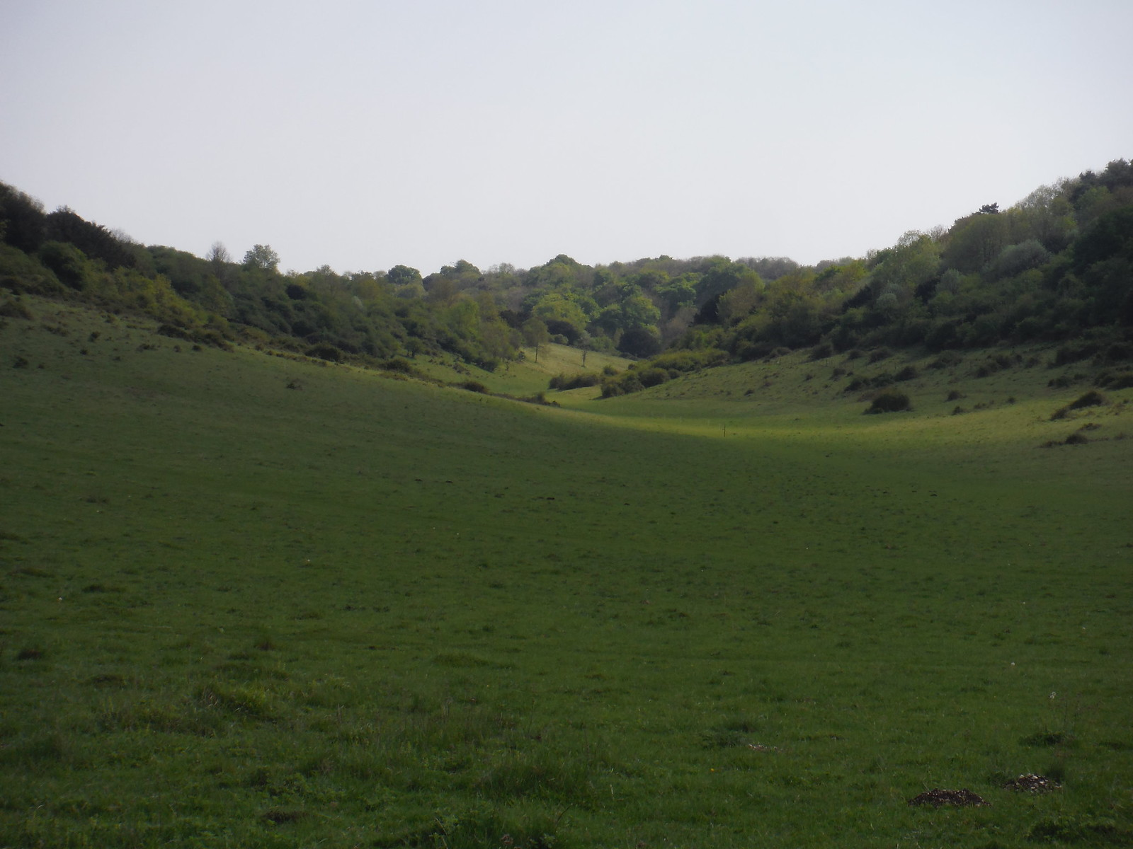 Bramshott Bottom SWC Walk Rowlands Castle Circular - Extension