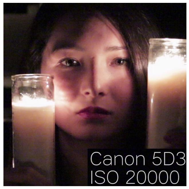 Canon5d3_iso20000_100percentcrop