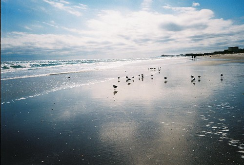Cocoa Beach, FL [film.] by the wash