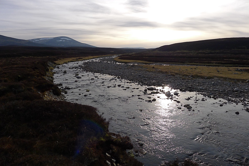 The River Feshie