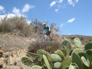 cathy on singletrack in the sun