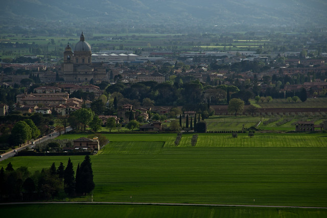 Assisi - Cathedral and Fields
