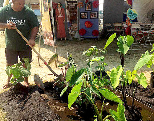 <p>The University of Hawaii contingent worked together on July 1 to pick up the pieces and prepare for the re-opening of the Smithsonian Folklife Festival after a severe thunderstorm shut down the festival on June 30.</p>
