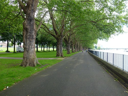 Thames Path 02 - Wandsworth Park