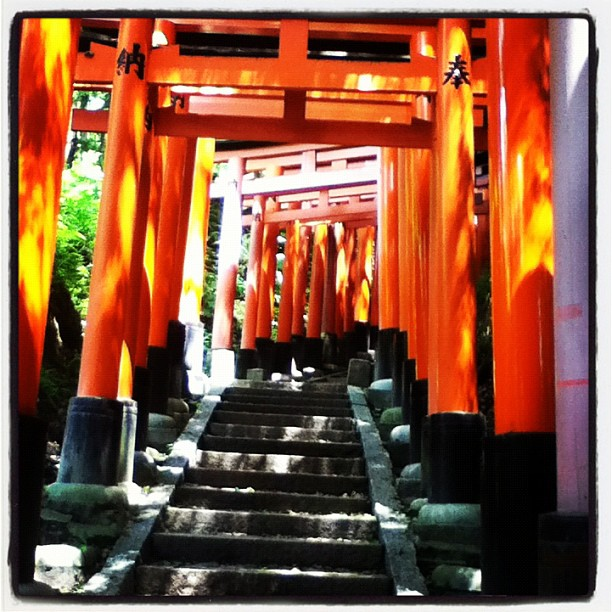 Fushimi Inarii. Torii gates for miles on the side of a hill. Just awesome.
