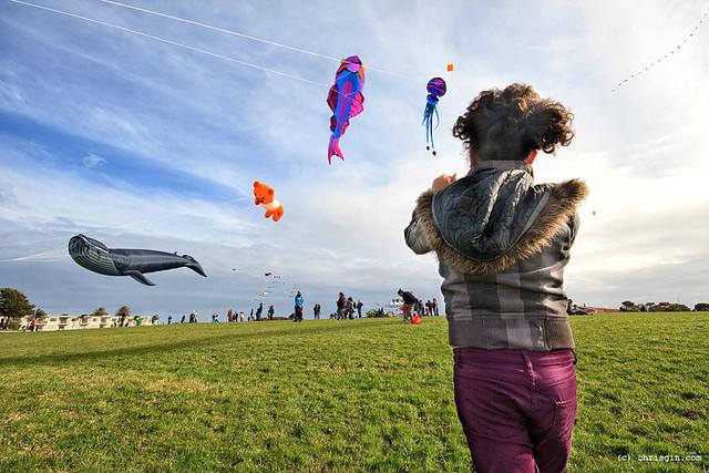 Matariki Kite Day 2012
