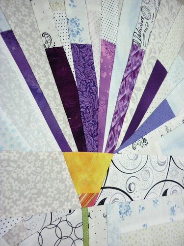 purple aster2