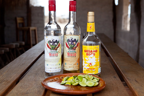 Tequilas and Mezcal to drink