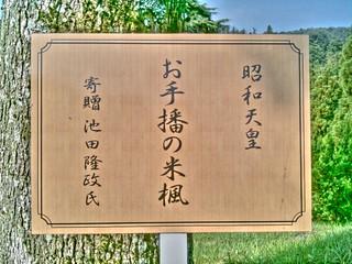 岡山国際ゴルフ倶楽部 #1