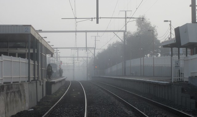 Fog at Bentleigh