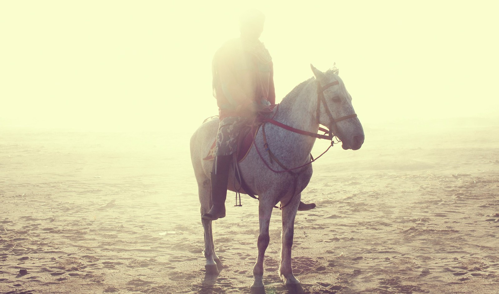 Light Knight - Sand sea, Bromo, Indonesia