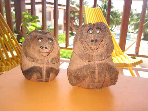 Coconut monkeys from Sergio