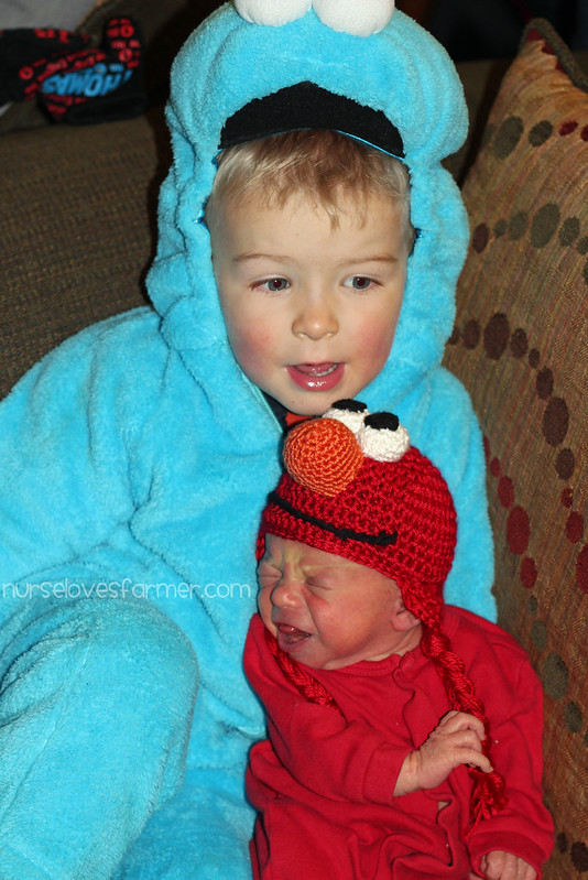 My Cookie Monster & My Elmo