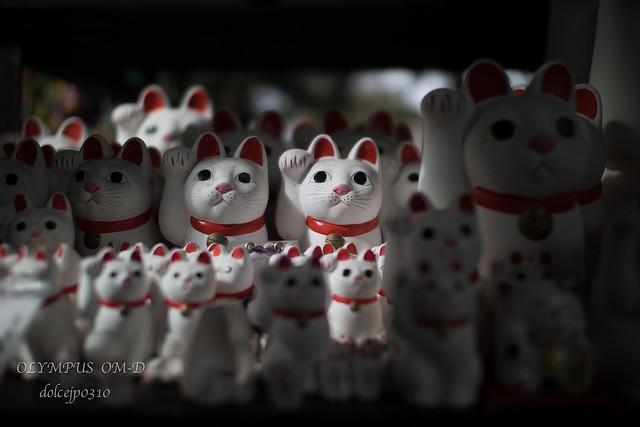 招福猫児 Maneki-Neko