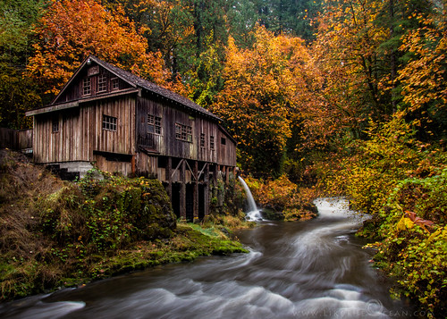 nov longexposure travel autumn usa mist mill fog canon woodland photography photo washington fallcolors photoblog 7d cedarcreek 2012 gristmill sathya 3xp cedarcreekgristmill postaday postaweek2012