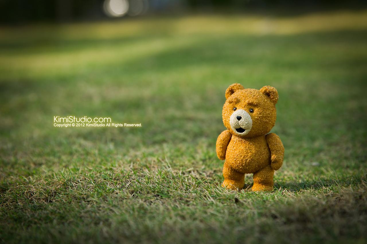 2012.11.06 Teddy-004