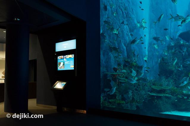 Shipwreck Habitat (interactive)
