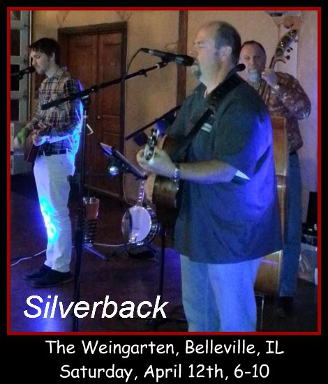 Silverback 4-12-14