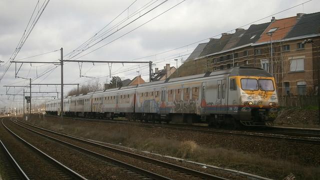 AM 396 Muizen
