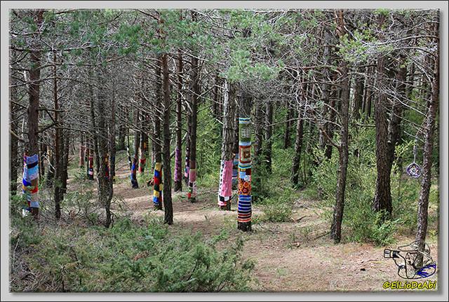 11 Ruta de los Duendes y Bosque encantado