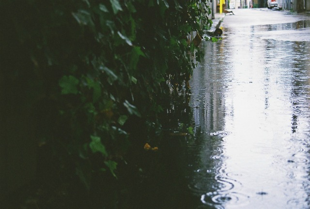 alley puddle by Matthew Rice