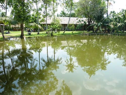 V 12-Ho Chi Minh-Parc-Maries (41)