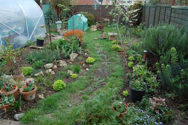 A view across the back garden