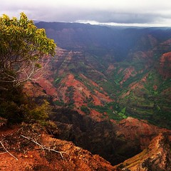 Waimea canyon, so pretty!