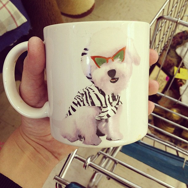 cool mug dawg