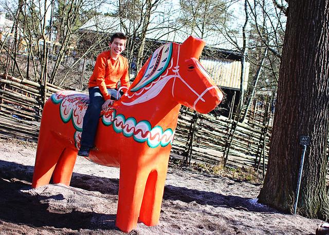 joey swedish horse