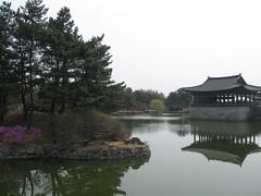 2012-1-korea-217-gyeongju-anaphi pond