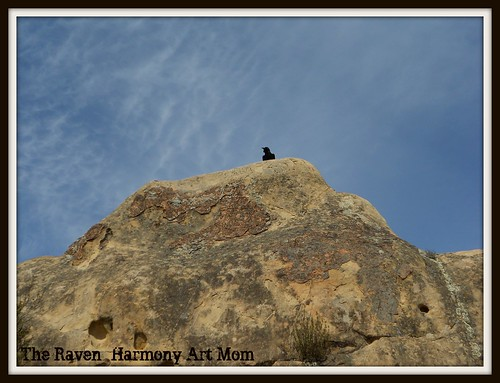 Mt. Diablo Rock City - Raven