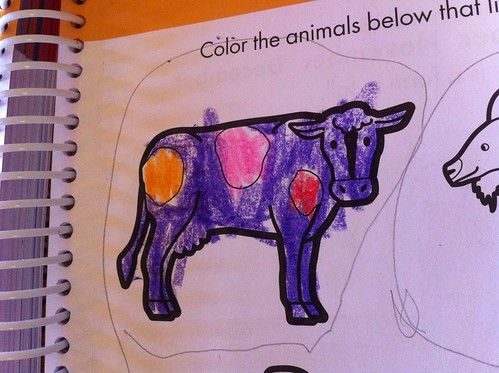 Finn's purple cow