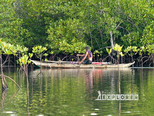 Bongsalay Mangrove Natural Park (2 of 12)