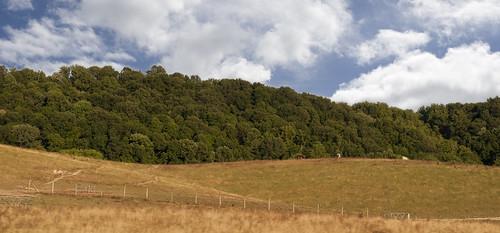 rural landscape layers 52weeks2012