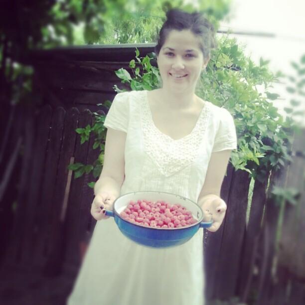 Raspberries, fresh picked from the garden