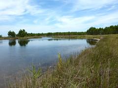 Pozzo Sale : vers l'embouchure de ce marais