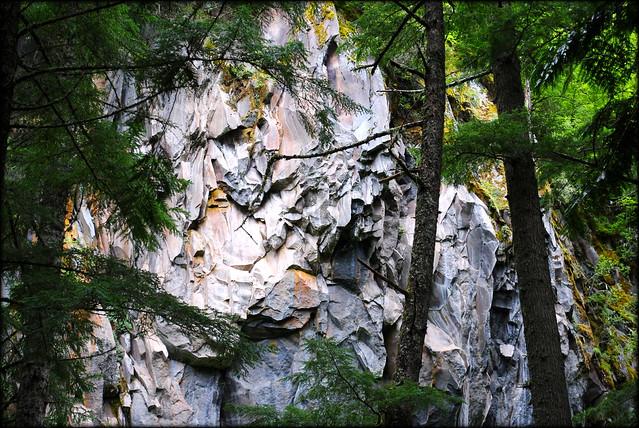 Ramona Falls Trail - Mt. Hood