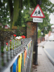 201/366 - Bunting and Flowers