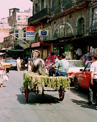 Istanbul Summer of 1995 (22)