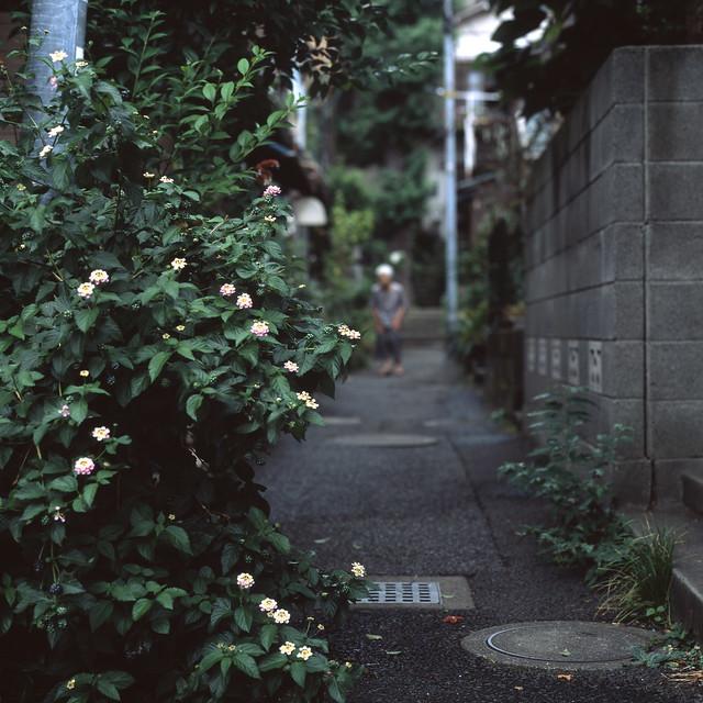 路地の暮らし