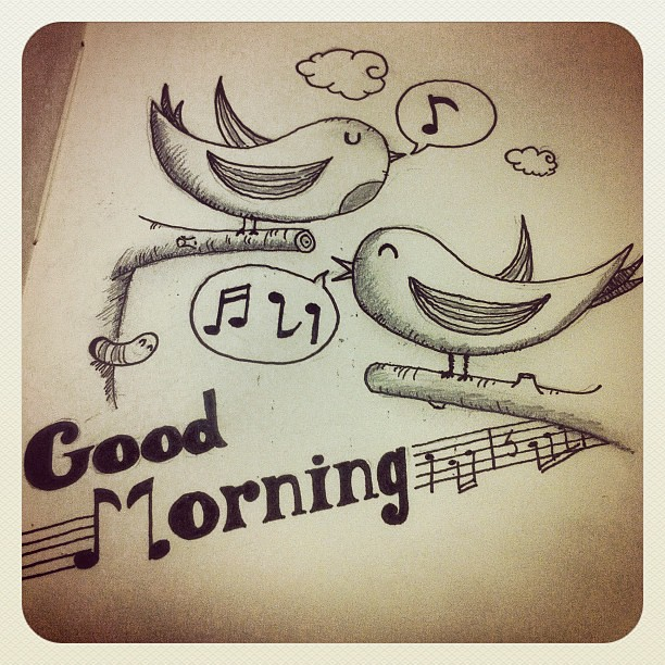 good morning design dibujo pencil birds morning goodmorning sketch illustration