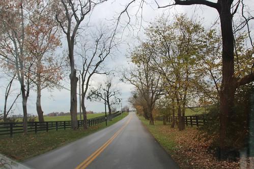 Day 93: Kentucky Bourbon Trail.