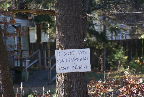 IF YOE HATE YOUR GRAND KIDS VOTE OBAMA