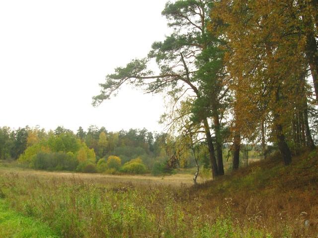 Место, где были похоронены князья  Хованские