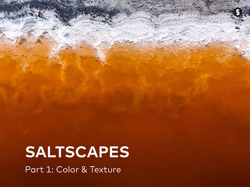 Cover - Saltscapes article on Storehouse