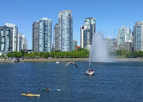 It's all happening on False Creek