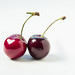 2 cherries - 166/366 by auntneecey