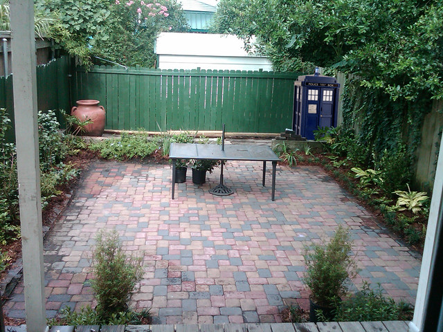 Dr. Who's Backyard