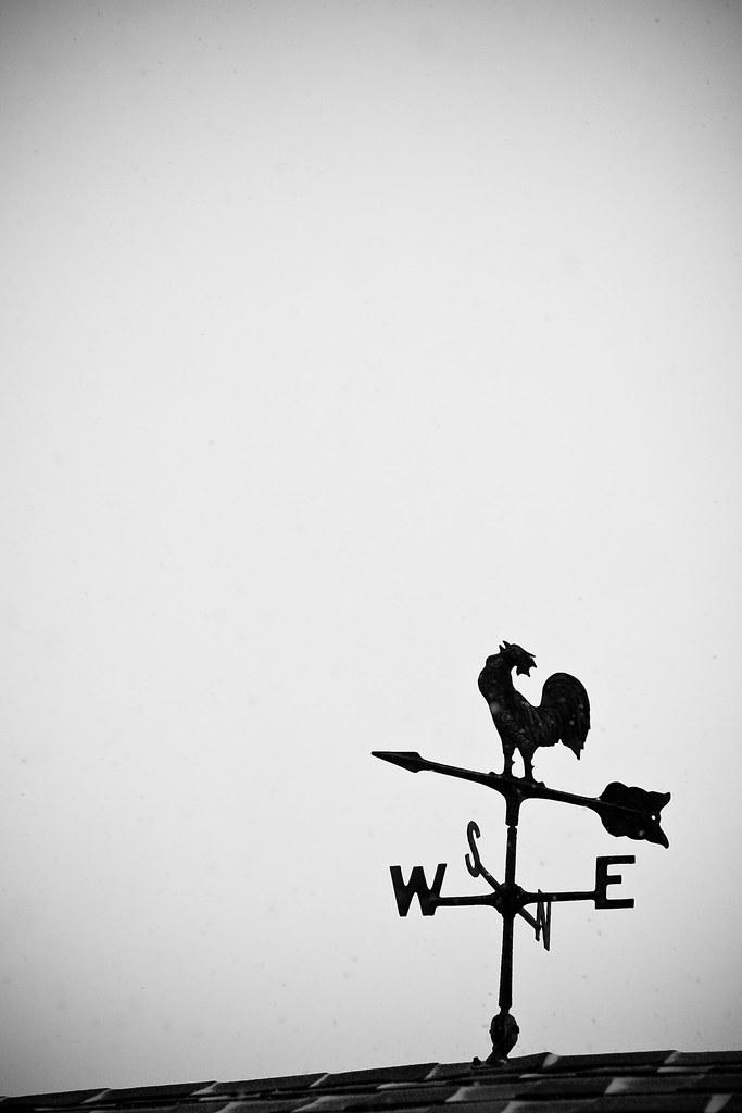 WeatherVane-9397